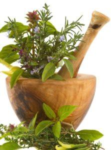 1315162630_1306775054_herbal-medicines-information