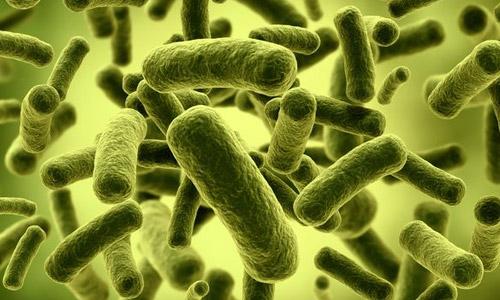 1393961777_probiotic-1