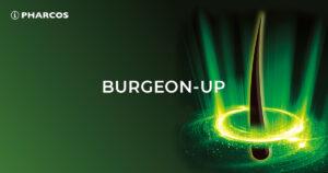 Burgeon Up
